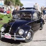 Escarabajo 19