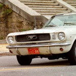 Maximo Palmbaum. Ford Mustang 66